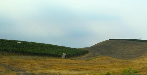 Spring Valley Vineyards